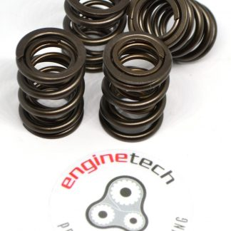 Group VAG 1.8T 20v exhaust valve springs kit-0
